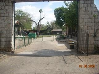 השער לחצר