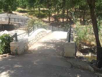 מסלול בגן